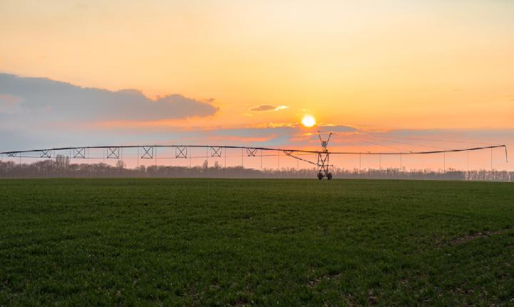 Plano Safra 21/22 aumenta recursos para técnicas agrícolas sustentáveis
