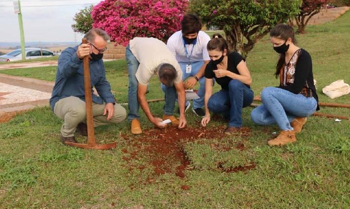 Santa Helena adere ao Dia do Voluntariado e efetua o plantio de Ipês Amarelos