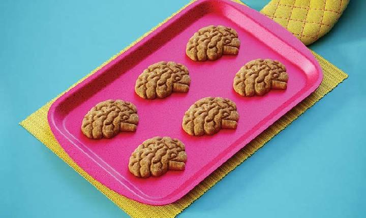 Tamanho do cérebro muda com a temperatura durante o ano